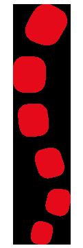 quiflex ikon wirbelsaeule - QUIFLEX® Flüssigfuge
